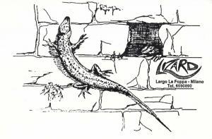 1991-lizard-xxxx-02-29 p1 i01